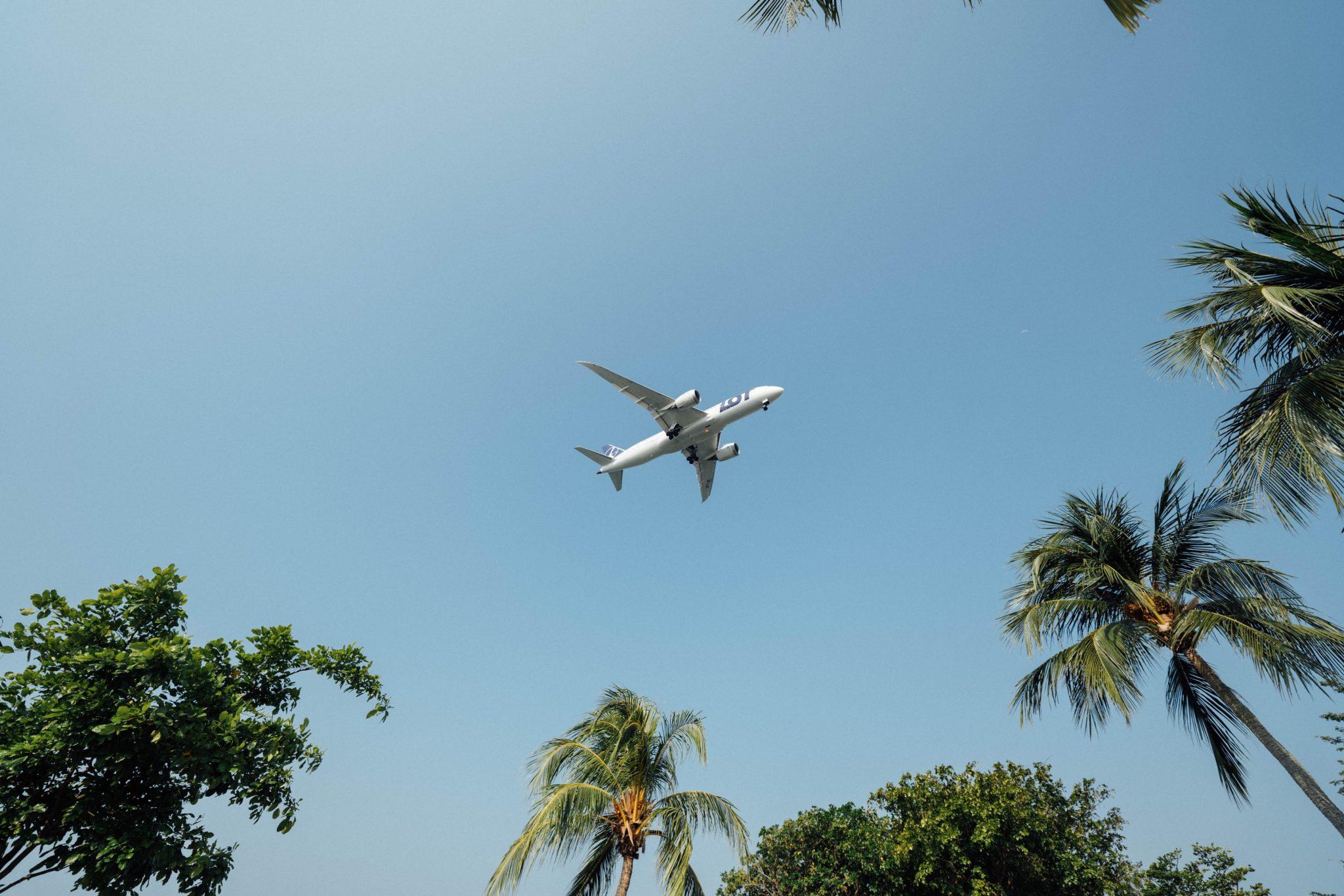 paura di volare come superarla